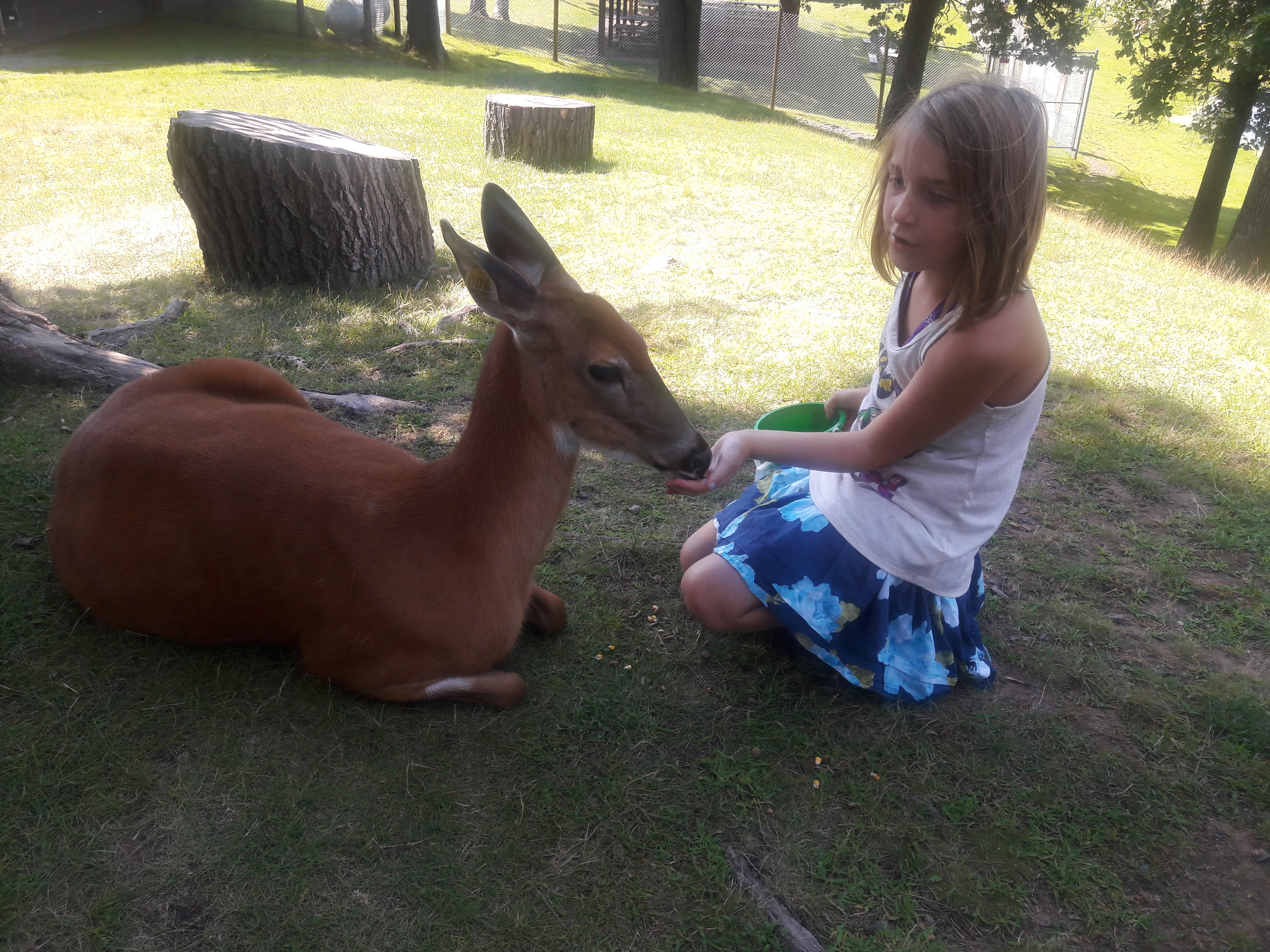 Andrea and Addison Deer